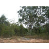 Land for Sale Russell Island Queensland